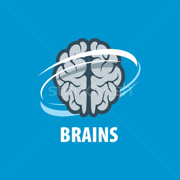 Vector brain logo Stock photo © butenkow