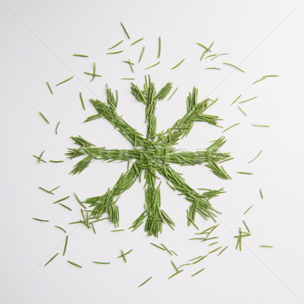 Green snowflake of the needles Stock photo © butenkow