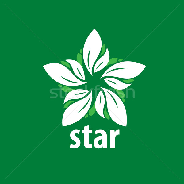 vector logo star Stock photo © butenkow
