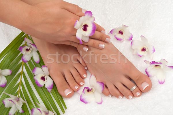 Pedicure pies flor palma relajarse orquídeas Foto stock © BVDC