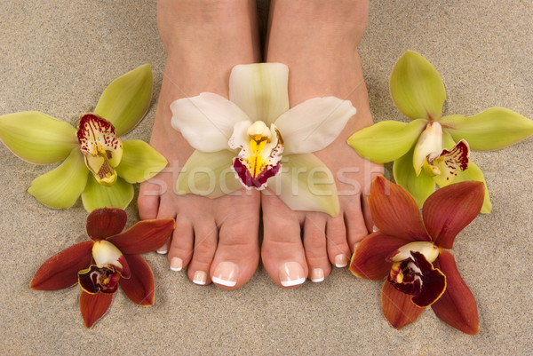 Orchids and Feet Stock photo © BVDC