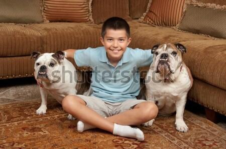 Szeretet otthon ágy kutyakölyök barát díszállat Stock fotó © BVDC
