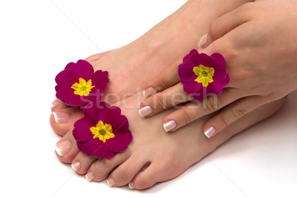Foto d'archivio: Spa · trattamento · termale · bella · esotiche · fiori · fiore