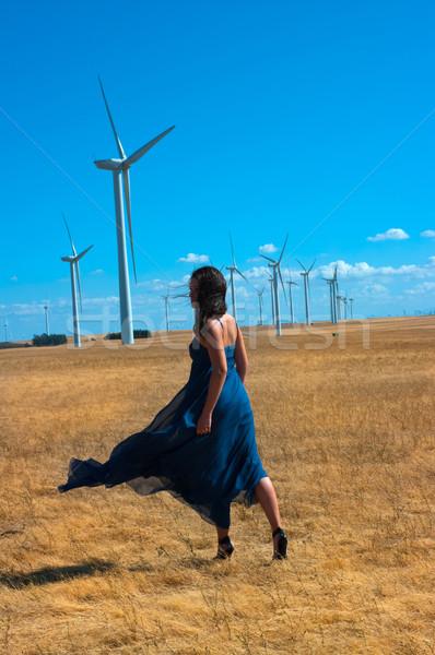 Wind Turbines Stock photo © BVDC