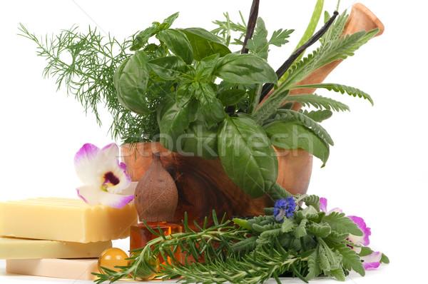 Herbal Therapy Stock photo © BVDC