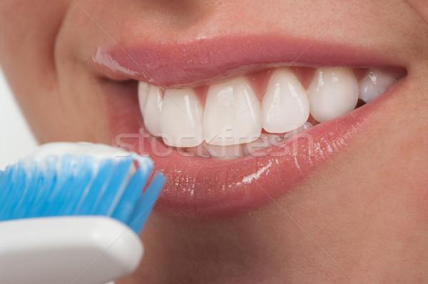 Fogmosás ajkak fogak női ecset kozmetikai Stock fotó © BVDC
