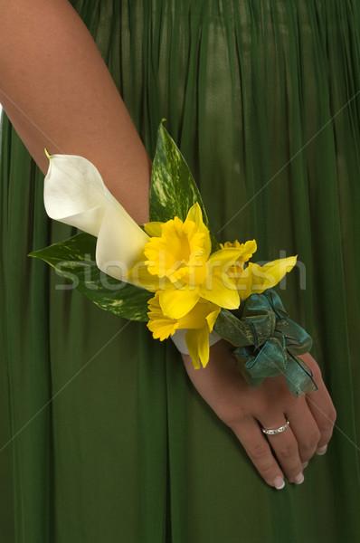 Prom casamento flor primavera mão moda Foto stock © BVDC