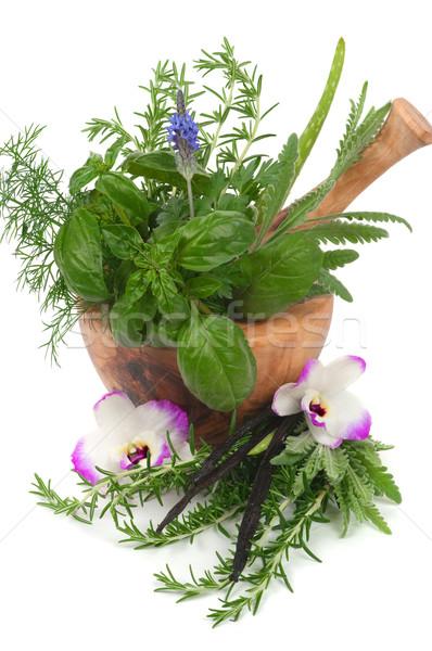 Terapia erbe alternativa aromaterapia fiore Foto d'archivio © BVDC