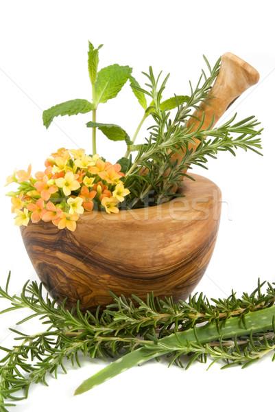 Hierbas saludable aromático spa menta romero Foto stock © BVDC