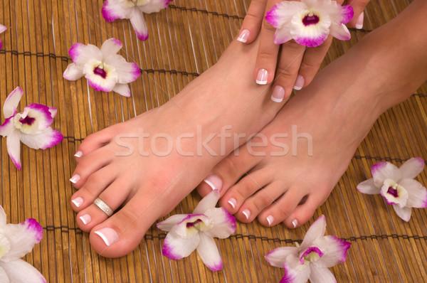 ストックフォト: スパ · 温泉療法 · 美しい · エキゾチック · 蘭 · 花