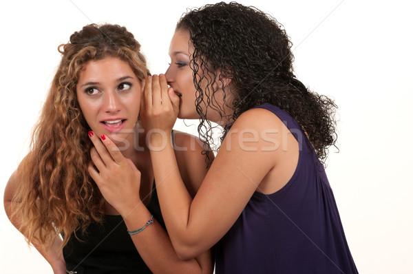 Segreto amici ragazza parlare adolescente Foto d'archivio © BVDC
