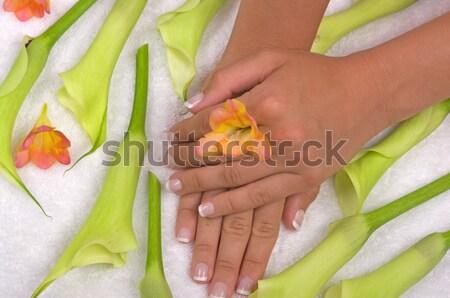 Spa-behandeling mooie lelies vrouw voorjaar gezondheid Stockfoto © BVDC
