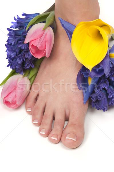 Estância termal pé mãos aromático flores folha Foto stock © BVDC