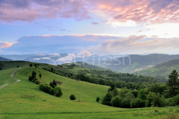 Güzel yaz manzara dağlar güneş şafak Stok fotoğraf © byrdyak