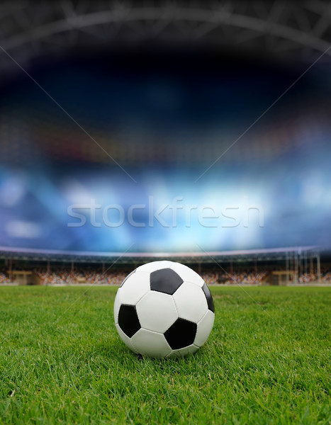 Soccer ball campo stadio luce erba natura Foto d'archivio © byrdyak