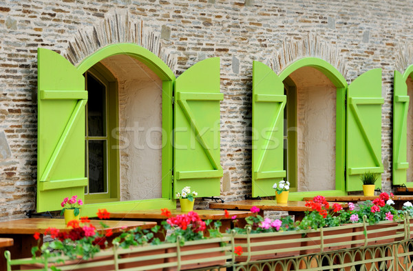 Wooden green house windows and flowers  Stock photo © byrdyak