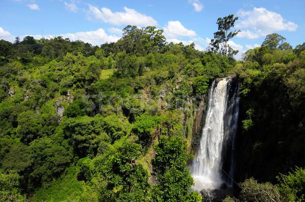 ケニア ビッグ アフリカ 山 旅行 滝 ストックフォト © byrdyak