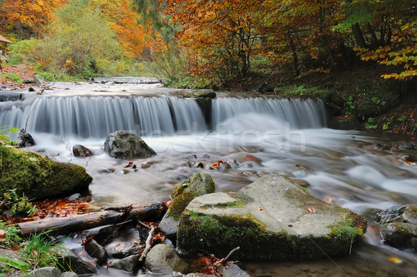 Stock photo: Autumn forest waterfall