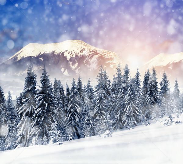 Foto stock: Inverno · paisagem · belo · neve · coberto · árvores