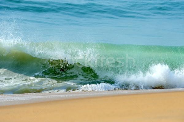 волна океанская волна океана песок пляж текстуры Сток-фото © byrdyak