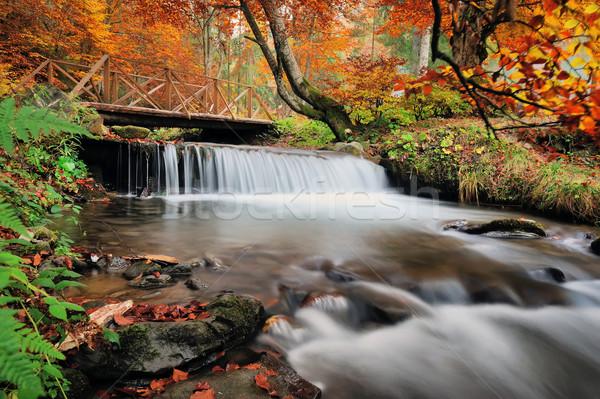 Najaar bos waterval rotsen Geel bladeren Stockfoto © byrdyak