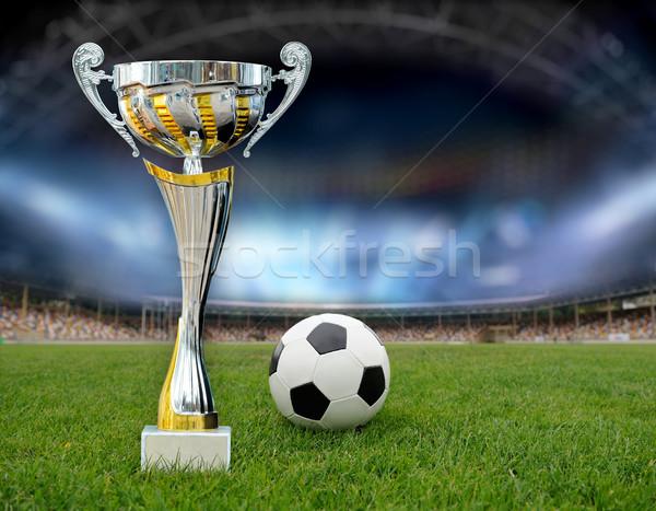 Złoty trofeum trawy boisko do piłki nożnej strony sportu Zdjęcia stock © byrdyak