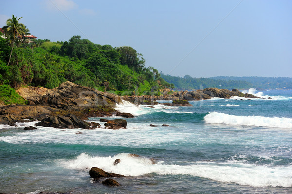 тропический пляж Palm Шри Ланка пляж небе воды Сток-фото © byrdyak