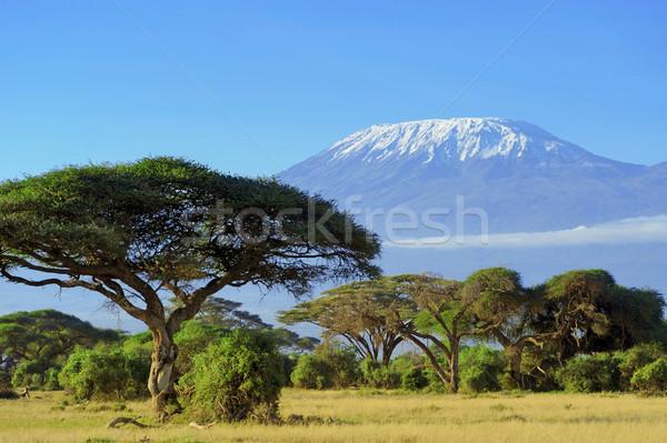 Hó felső Kilimandzsáró felhők szépség hegy Stock fotó © byrdyak