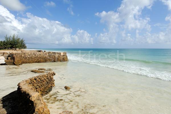 Playa océano hermosa tropicales indio naturaleza Foto stock © byrdyak