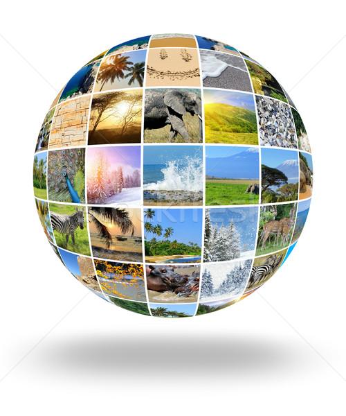 Stock photo: Nature photo (animal, landscape, beach)