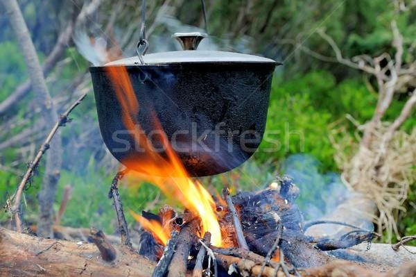 Calderone cottura natura fuoco foresta alimentare Foto d'archivio © byrdyak