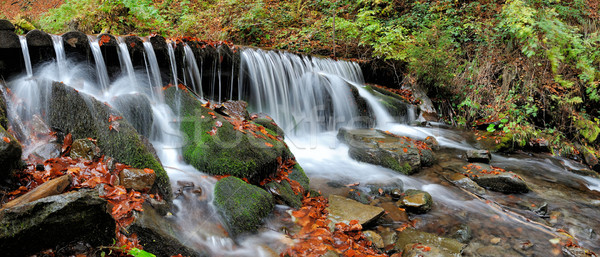 Mountain river in the autumn forest Stock photo © byrdyak