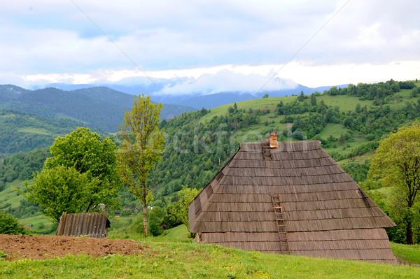 Montagne paysage belle été jour arbre Photo stock © byrdyak