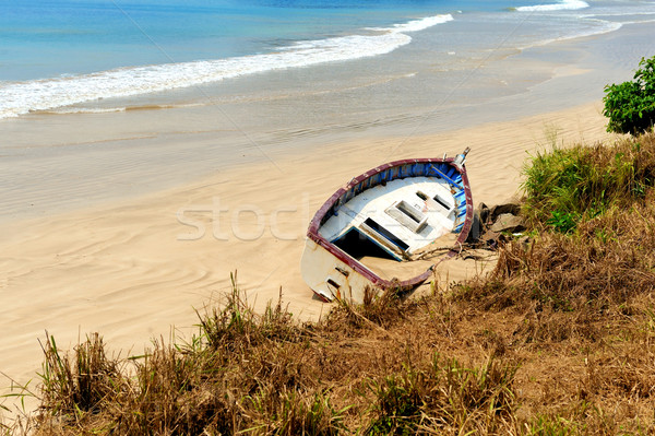 Old yacht stranded on a beach Stock photo © byrdyak