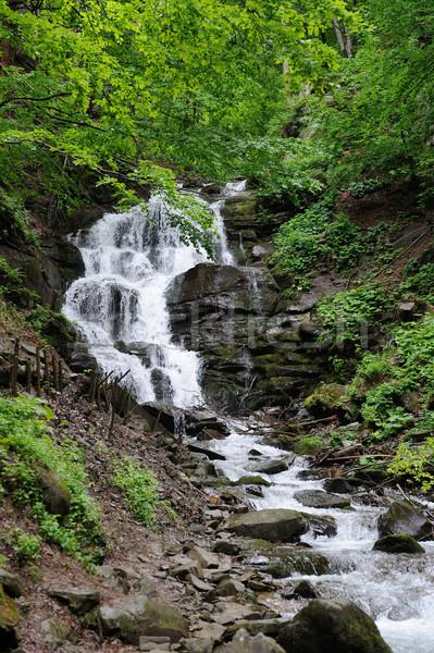 водопада лес глубокий горные фон дождь Сток-фото © byrdyak