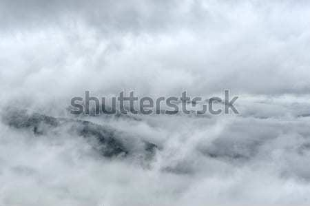 Fog and cloud mountain valley landscape Stock photo © byrdyak
