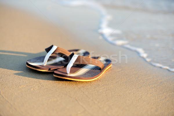 Stockfoto: Zanderig · oceaan · strand · zomervakantie · zon