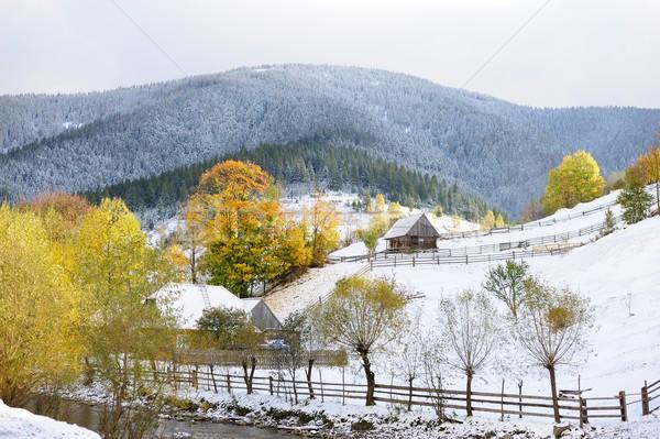 Ilk kar orman dağlar çim ahşap Stok fotoğraf © byrdyak