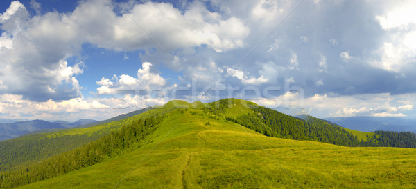 Montana paisaje hermosa cielo árbol Foto stock © byrdyak