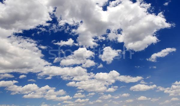 Blue sky Stock photo © byrdyak