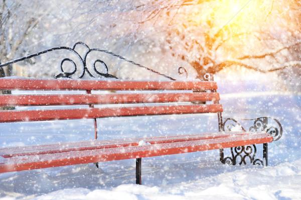 Сток-фото: скамейке · зима · парка · снега · дерево · солнце