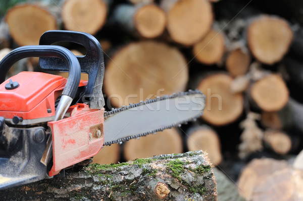Chainsaw Stock photo © byrdyak