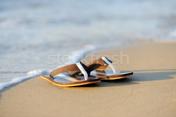 Kumlu okyanus plaj yaz tatili gökyüzü Stok fotoğraf © byrdyak