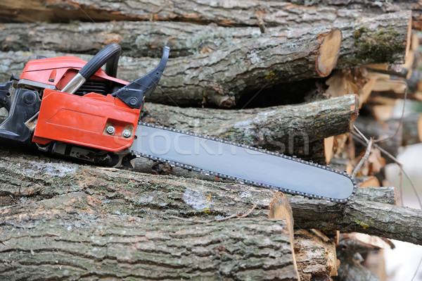 Chainsaw and tree Stock photo © byrdyak