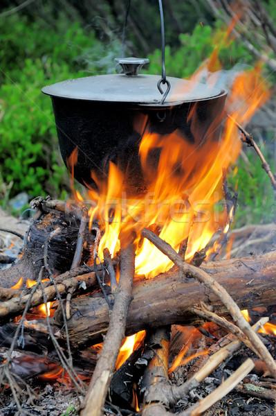 üst főzés természet tűz erdő étel Stock fotó © byrdyak