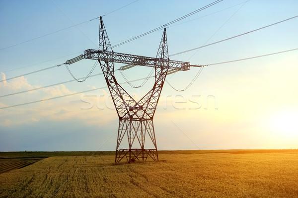 высокое напряжение линия электроэнергии культурный области небе Сток-фото © byrdyak