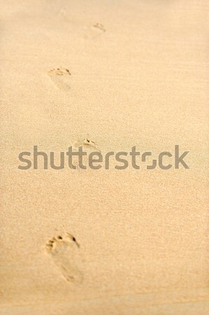 Emberi lábnyomok tengerparti homok vezető messze tengerpart Stock fotó © byrdyak
