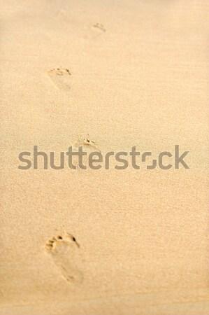 Human footprints on the beach sand leading away Stock photo © byrdyak
