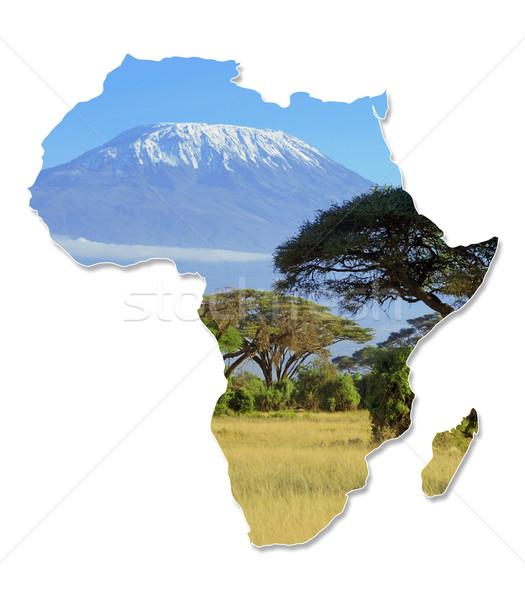 África animais selvagens mapa projeto isolado branco Foto stock © byrdyak