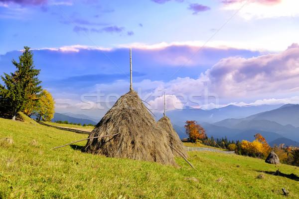 Berg dorp bergen traditioneel boom natuur Stockfoto © byrdyak